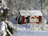 Dalsland Sweden - Photo from Piqsels id-sncmh