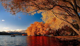 New Zealand, autumn