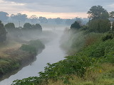 Maitland - Fog lifting at Wallis Creek