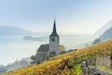 Church, vineyards, lake, fog, autumn, landscape