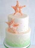 Starfish cake @ The SweetSide
