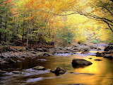 Beautiful-scenery-autumn
