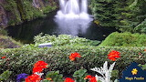 Butchart Gardens by Debbie Burris from auricle99 on magic jigsaw