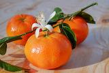 healthy food-tangerine
