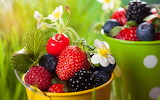 ☺♥ Gifts from nature...