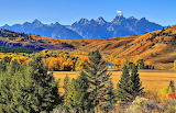 Autumn Foliage Kelly Wyoming USA