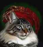 Elegant Cat