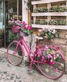 Shop flower bicycle London UK
