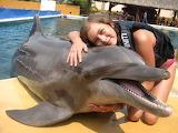 Hug the dolphin