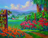 ☺♥ Allure of Napa Valley...