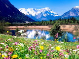 Spring Arrives in the Rocky Mountains USA