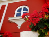 ^ Geraniums in front of red house