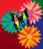 ☺♥ Butterfly...