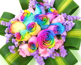 rainbow colored bouquet