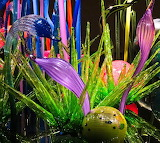 Colorful Chihuly Glass