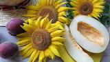 (tapeciarnia.pl)tapeta-kwiaty-slonecznika-obok-przekrojonego-mel