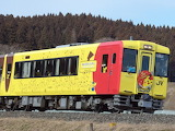 Train 131