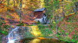 Grist Mill Deep In The Forest USA