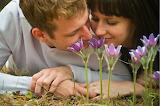 #Spring Romance