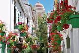 In Estepona, Spain