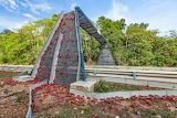 ^ Christmas Island red crab bridge - 50 million migration