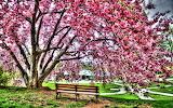 ☺ Beautiful park...