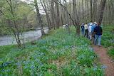 Wolf Creek Narrows