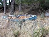 Deer in a canoe