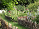 France Parks Malva Coulommiers Fence Shrubs 516330 1365x1024