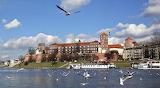Castello del Wawel-Cracovia-Polonia