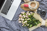 flowers, laptop