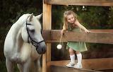 Joy, dandelion, horse, the fence, girl