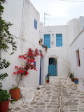Various small 158 white houses and flowers Greece