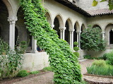 Peaceful Cloister in Tarbes
