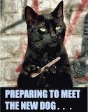 Preparing to meet