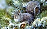 Esquirol - Squirret