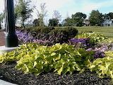 Nice Garden Feature