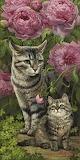 Momma & Kitty