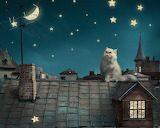 ☺ Starry night...