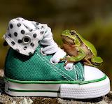 ☺ Green...