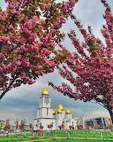 Nativity of the holy virgin church, Lviv, Ukraine