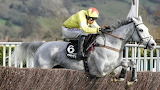 Politologue and Harry Skelton 2020 Champion Chase