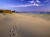 Footprints in the Sand Oregon Coast