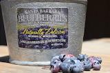 Santa Barbara Blueberries near Buellton, CA