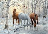 Winter horse trio