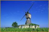 Moulin à vent de la tranchée - Montsoreau