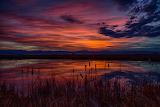 Ninepipe NWR, Montana (c) Dave Fitzpatrick