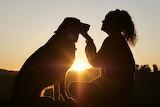 Dog-Girl-sunrise