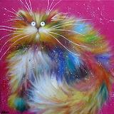 cat by Kim Haskins