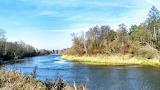 Rzeka Bug w okolicach Włodawy 4